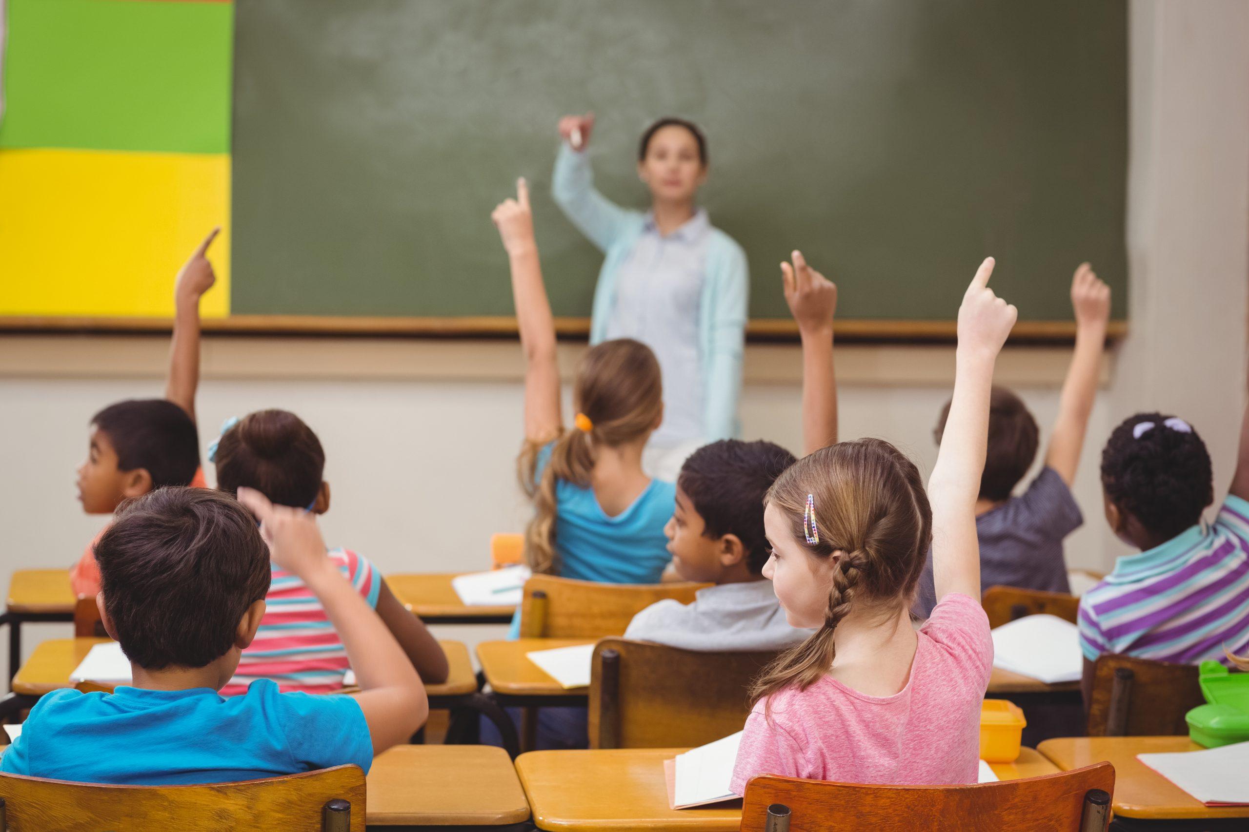 Studyberg Teaching